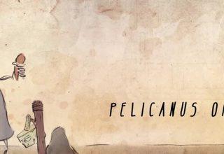 Pelicanus Onocrotalus, le film d'animation 2D de Aline Lascols